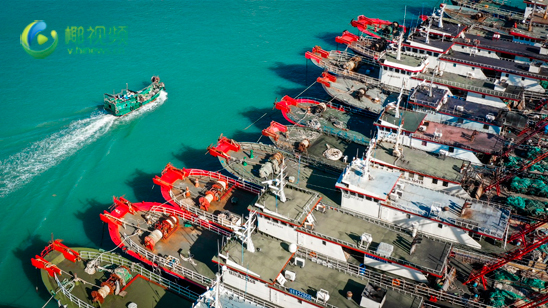 """台风""""环高""""靠近 亿博体育app下载万余艘渔船陆续回港避风"""
