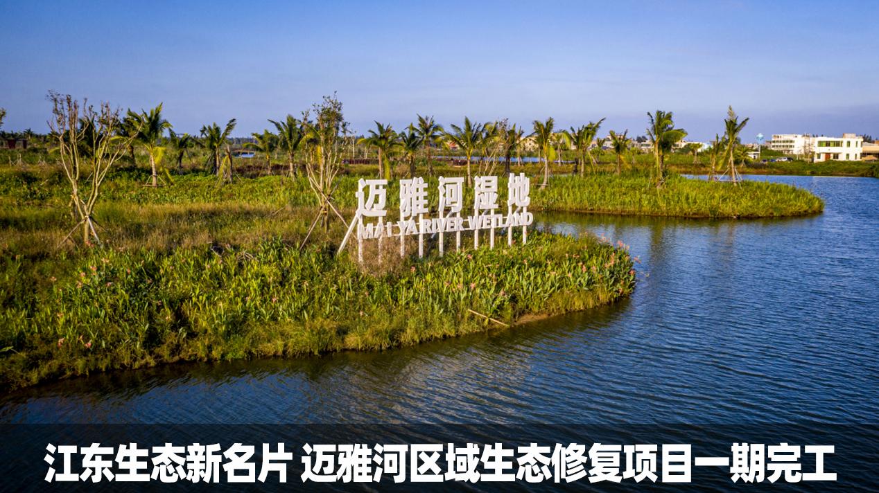 海口江东区生态新名片 迈雅河区域生态修复项目一期完工