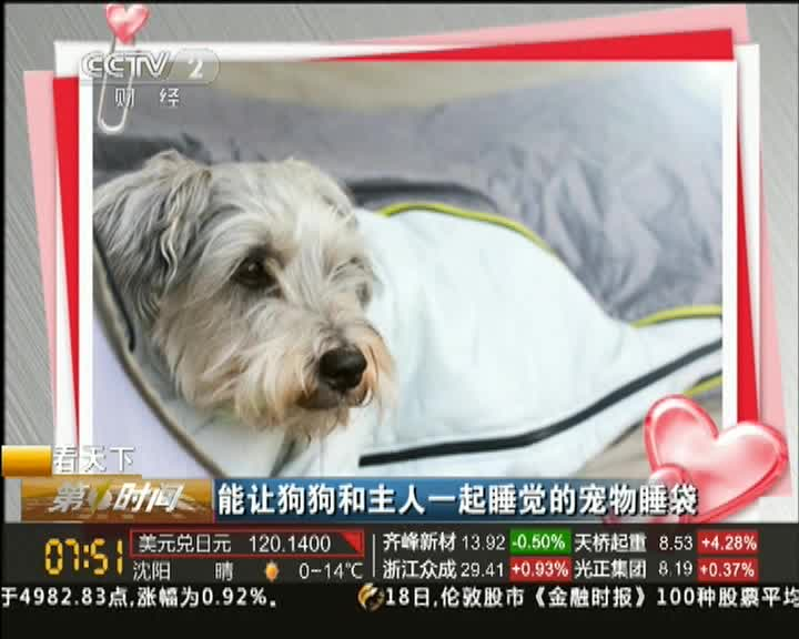 能让狗狗和主人一起睡觉的宠物睡袋